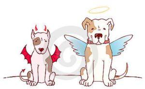 bad-dog-good-dog-13795304